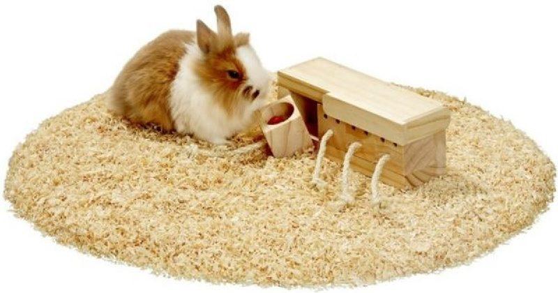 konijn met speelgoed