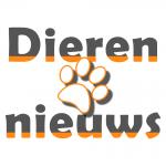 dierennieuws logo