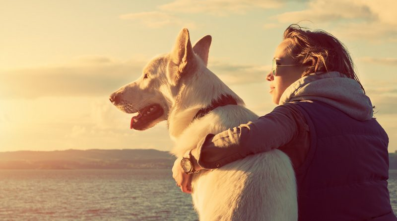 eropuit met je hond